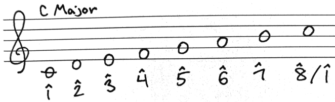 Photo 06 - C Major scale with scale degrees.jpg
